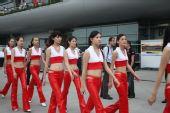 图文:08F1中国站靓丽车模 一群F1车模宝贝