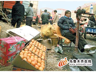 图为奇台路水果批发市场柑橘经营户在等待顾客。