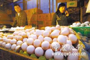 虽然重庆市场没发现问题鸡蛋,但眼下鸡蛋销量已减少三四成,价格也大幅下滑。 记者 罗川 摄