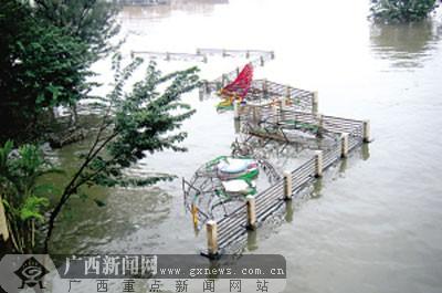 11月4日中午,南宁市民生广场一角。记者赵超摄