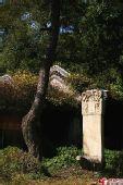 深秋初冬下的双泉寺几张小景(图)