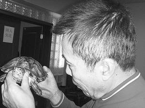 何庆魁和他的乌龟