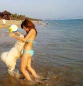 组图:戴花美眉海边艺术照 与爱犬玩耍满脸幸福