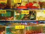 鲤鱼门海鲜美食区