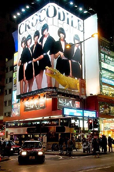 香港成购物游首选地