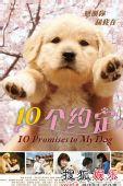 组图:《我和狗狗的是个约定》可爱海报曝光