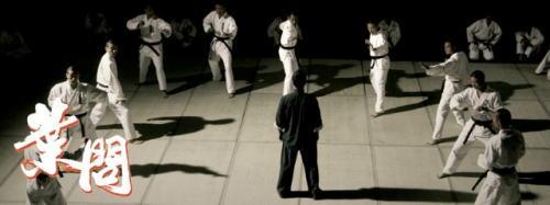 咏春拳,我不是行家,外行看热闹,我也觉得视觉效果很不凡.图片