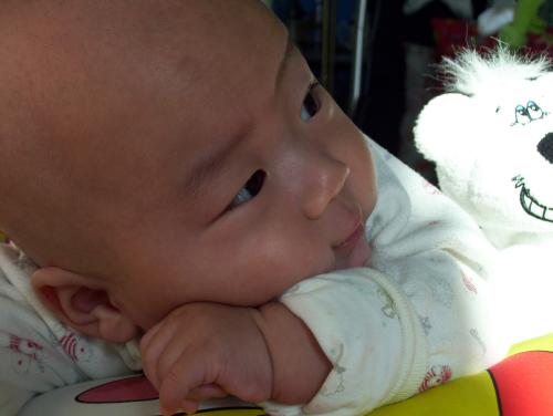 图注:室内照片,趴在床上,宝宝的小抬头纹都很明显