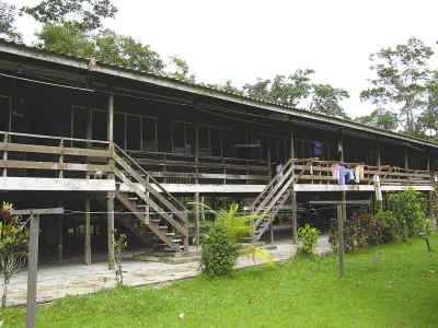 """马来西亚""""长屋"""" 屋前悬挂骷髅头"""