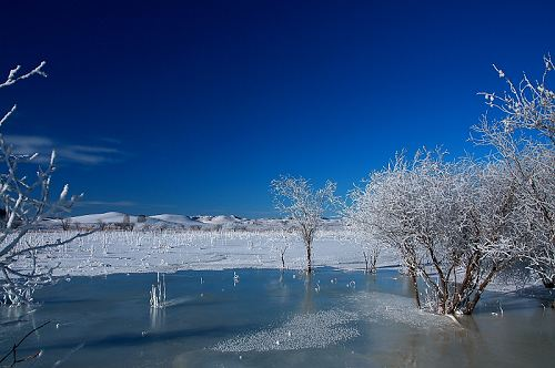 冬天的童话 塞罕坝草原皑皑白雪(图)