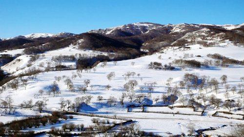 塞罕坝冬日的美丽雪景(组图)