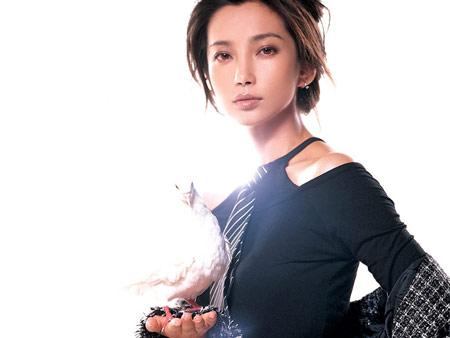 搜狐年度女明星提名: 李冰冰