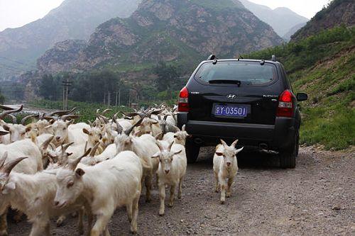 春节京郊自驾游 幽州两日最优方案