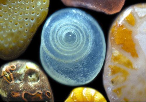 显微镜下的绚丽沙粒(组图)