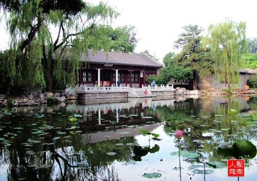 """Image result for 清华园 荷塘月色"""""""