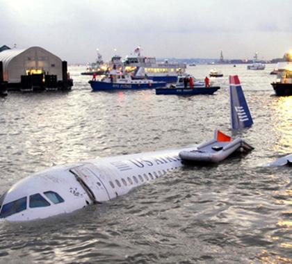 客机遭飞鸟撞击降落地面