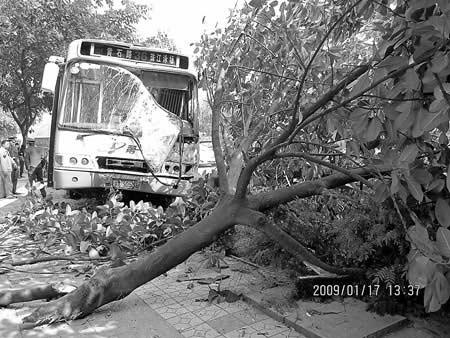 撞完66路车后,36路公交车面目全非。信息时报记者 巢晓 实习生 李慧芳 摄.jpg