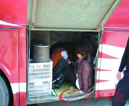 司机把超载乘客藏到大巴的行李厢里。