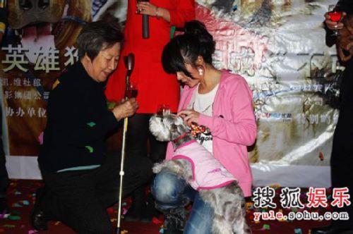 杨若兮与小动物保护协会会长