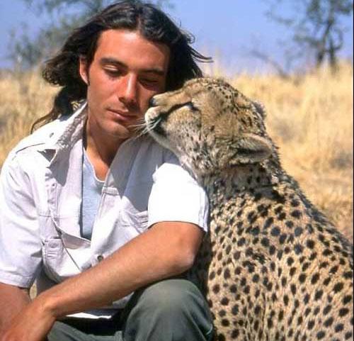 猎豹在亲吻主人
