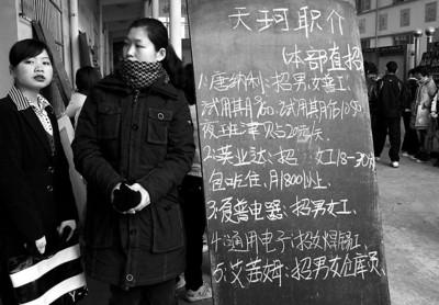 就业遭遇危机,劳务市场里出现越来越多年轻人的身影 新闻晨报记者 竺钢 摄