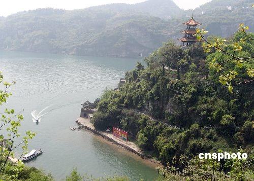 重庆启动长江两岸森林工程 为三峡库区披绿衣图片