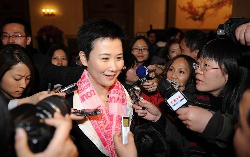 政协委员李小琳接受媒体采访