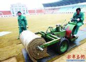 图文:[中超]青岛返修天泰体育场 草皮铺设完毕