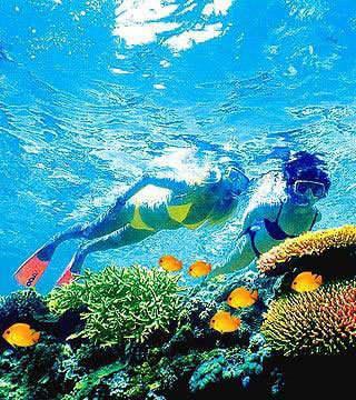 1、澳大利亚的大堡礁