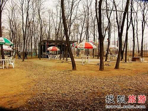 北京烧烤FB地推荐 萨拉伯尔烧烤园(图)