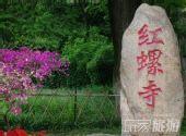 春游赏花与养生 红螺寺踏春攻略(组图)