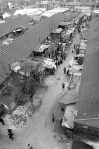 """截至今年2月4日,""""塘一塘二""""地块签约居民累计达997户 李瞻 现场图片"""