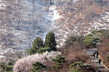 延庆海坨山下中雪