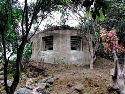 日本侵略者建的碉堡就藏在树丛中