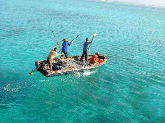 去马尔代夫海钓乐趣无穷?