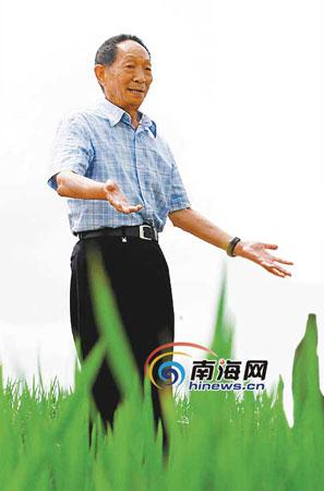 袁隆平坦言担心三亚50万亩育种基地不保(图)