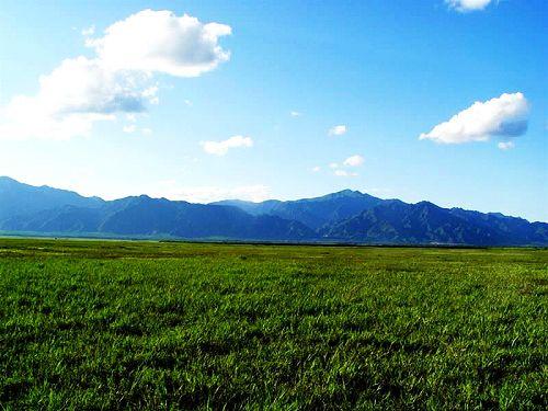 周边景点推荐:康西草原
