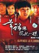 图片:电视剧《幸福像花儿一样》精彩海报 25