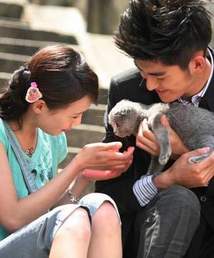 郑爽和张翰的爱情也成为该剧主线之一