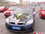 福克斯车友婚车队