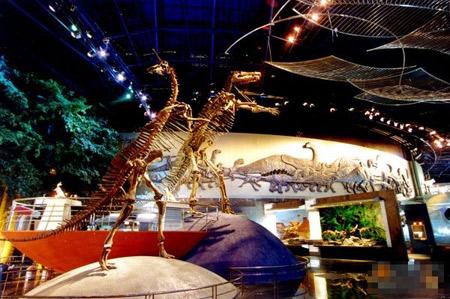 常州恐龙乐园 让宝宝欢腾的创意乐园