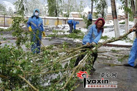 环卫工人正在清理被压断的树枝。亚心网记者 李远新 摄