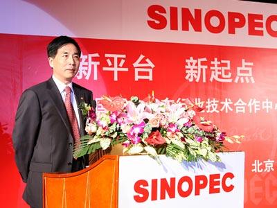 主持人-中国石化股份有限公司副总工程师 杨元一