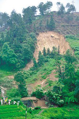 长寿区但渡镇黄草山因暴雨袭击发生大面积山体滑坡 通讯员 汪维 摄