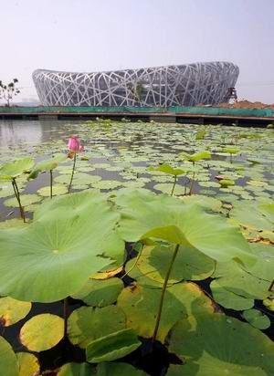 北京:鸟巢首会意超级杯