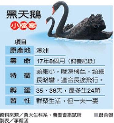 图片来源:台湾联合报