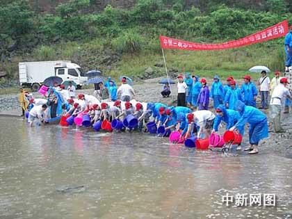 志愿者放流中华鲟。作者:何燕强