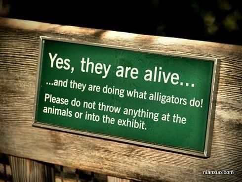 动物园古怪提示 试试你的英语水平