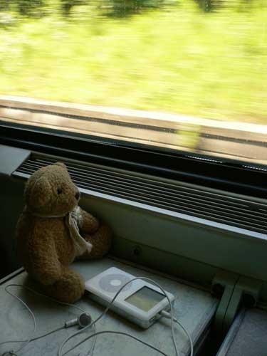 常伴著旅途的小熊