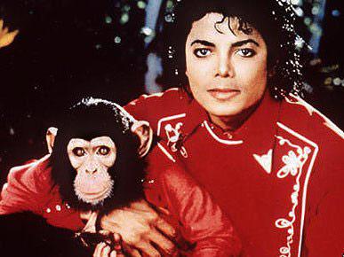 杰克逊和黑猩猩